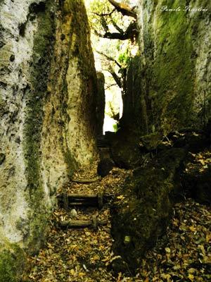 escursione cascate diosilla e monterano