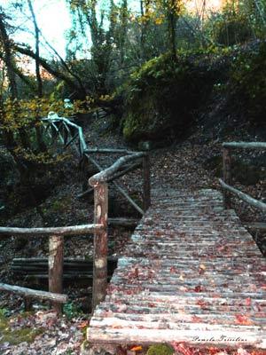 escursione mazzano romano