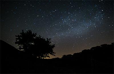 escursione notturna antica monterano